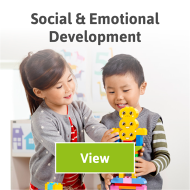 Lego Social and Development